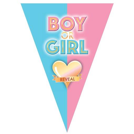 Vlaggenlijn Gender Reveal 5m