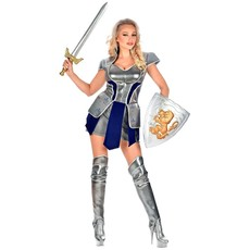 Ridder Kostuum Dames Zilver