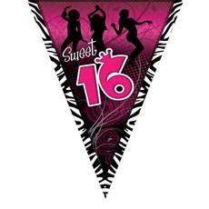 Vlaggenlijn Sweet 16 Roze - 5m