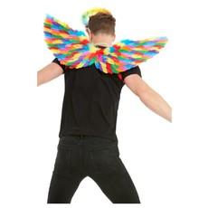 Regenboog Vleugels Met Veren