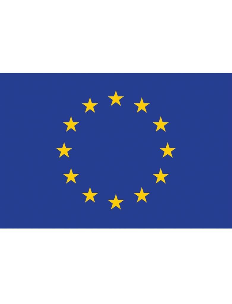 Feestbazaar Vlag Europa 90 x 150cm online kopen
