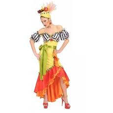 Braziliaanse dame verkleedkleding