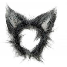 Oren Wolf