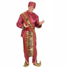 Tiger Indiaan kostuum man