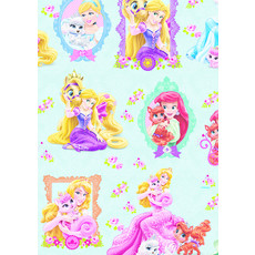Rol Cadeaupapier Disney Prinsessen