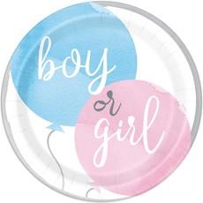 Feestborden Gender Reveal Boy Or Girl (8st)