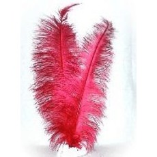Spadonis rood