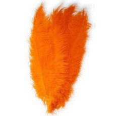 Spadonis oranje