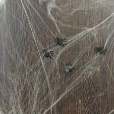 Spinnenweb 20 gram met 6 spinnen