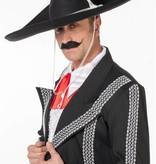 Mariachi hoed