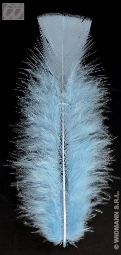 Zakje met 50 veertjes lichtblauw