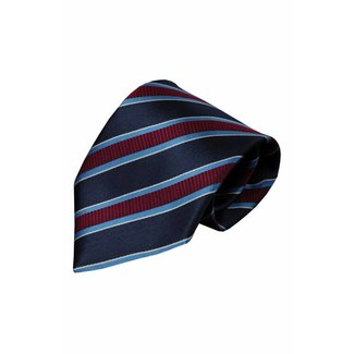 Vincelli Alberto  Blaue Krawatte Duronia 01