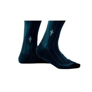 Cesare Paciotti Blauwe·streep·sokken·Vanise