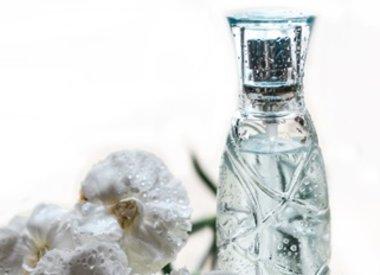 Parfums (Feromonen)
