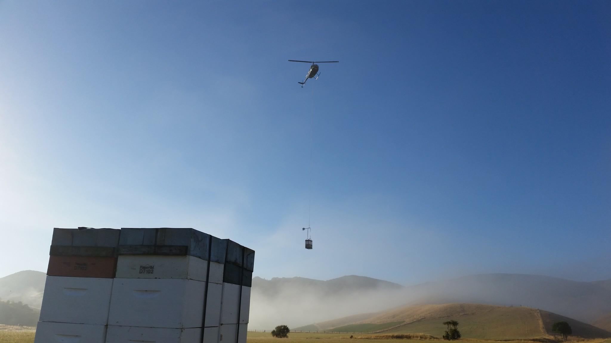 Helikopter Honig Manuka