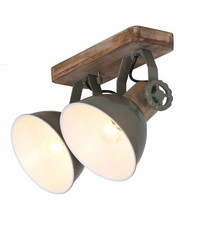 Steinhauer Spot Gearwood 2 lichts