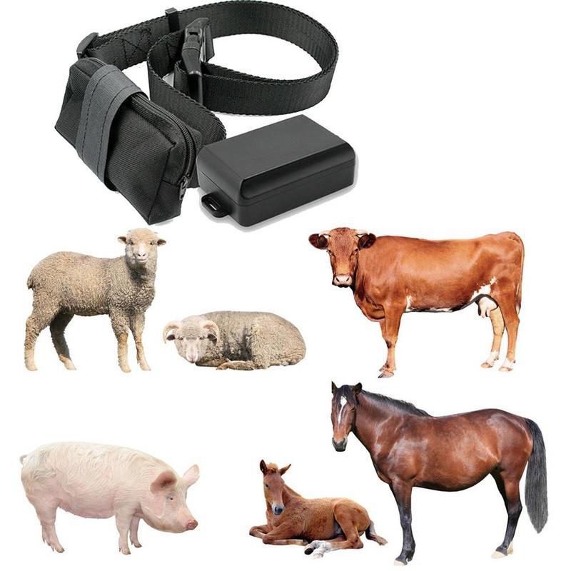 GPS Tracker met Halsband voor dieren zoals hond, koe, paard, schaap en paarden