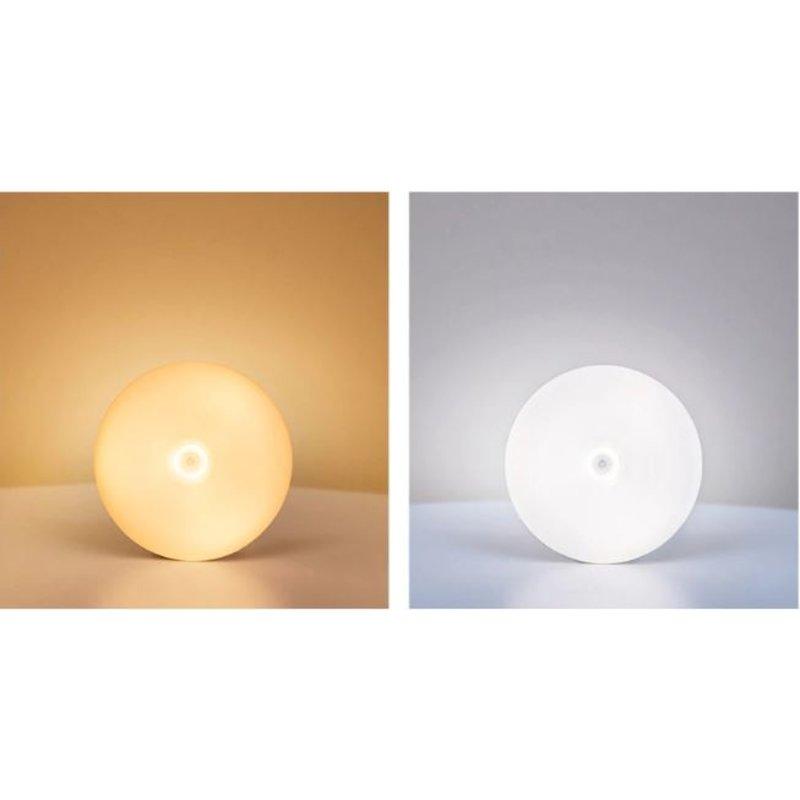 Nachtlampje met bewegingssensor LED Oplaadbaar