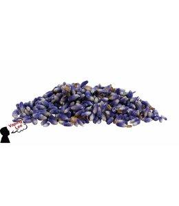 Lavendel (20 Gramm)