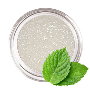 Creative Cosmetics Lipscrub - Mint