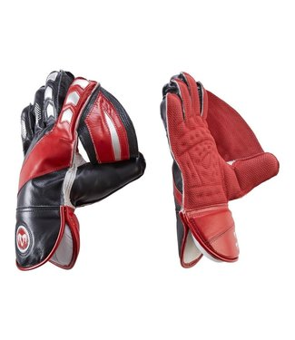 RAM Cricket Ram Cricket Wicket Keeping Gloves