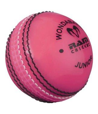 RAM Cricket Ram Cricket Wondabal