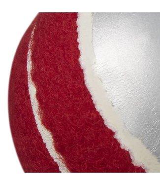 RAM Cricket Ram Cricket Swingbal