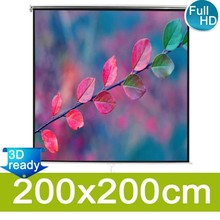 Projectiescherm mat wit 200x200 cm