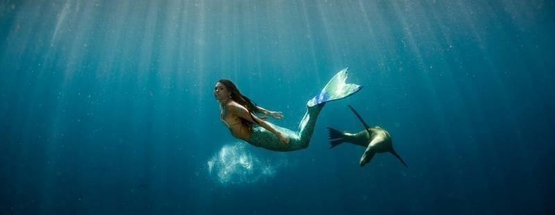 zwemmen als een zeemeermin voelt als vliegen