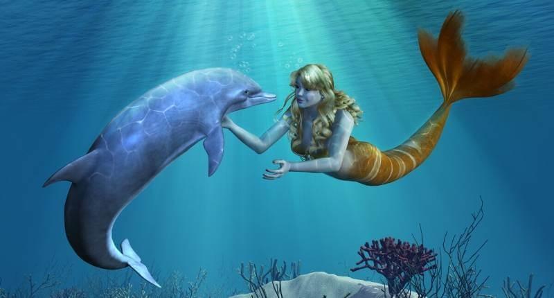vissen en dolfijnen als vriend onder water