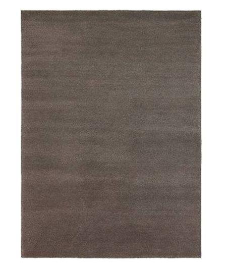 Yeti brown  051005