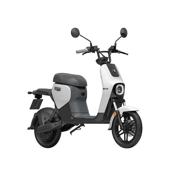 Segway B110S Elektrische scooter