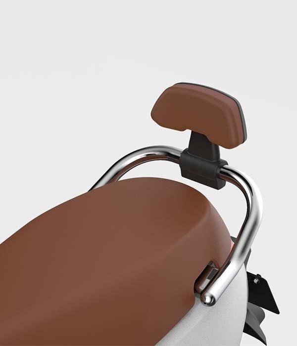 Segway Segway E110SE rugsteun zwart met bruin kussen