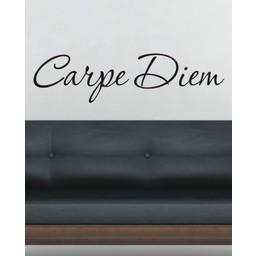 Carpe Diem. Muursticker / Interieursticker