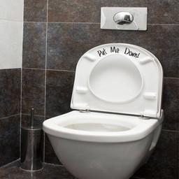 Put me down toilet sticker