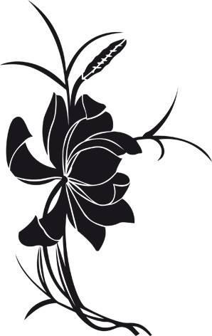Aziatische bloem