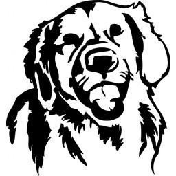 Golden Retriever hondje muursticker