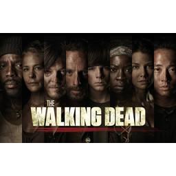Walking Dead poster 7