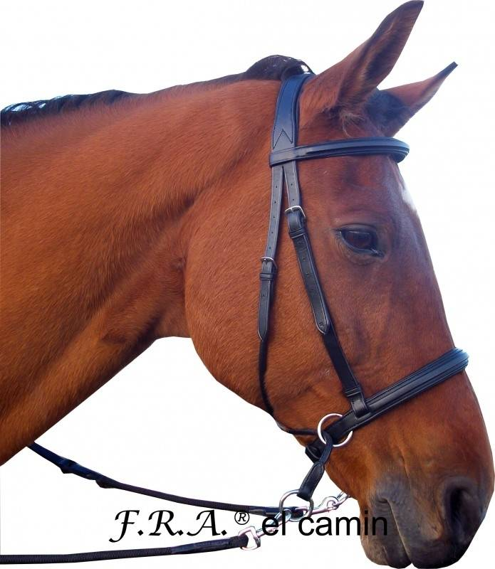F.R.A. El Camin cross Under Bridle