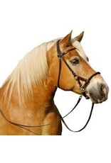 Testbridle 6 FRA Pardoes Side Pull