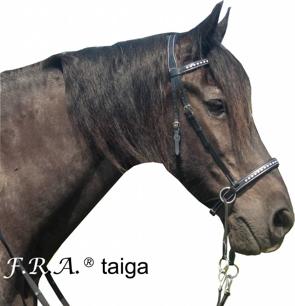 F.R.A. Taiga Cross Under Bitless Bridle