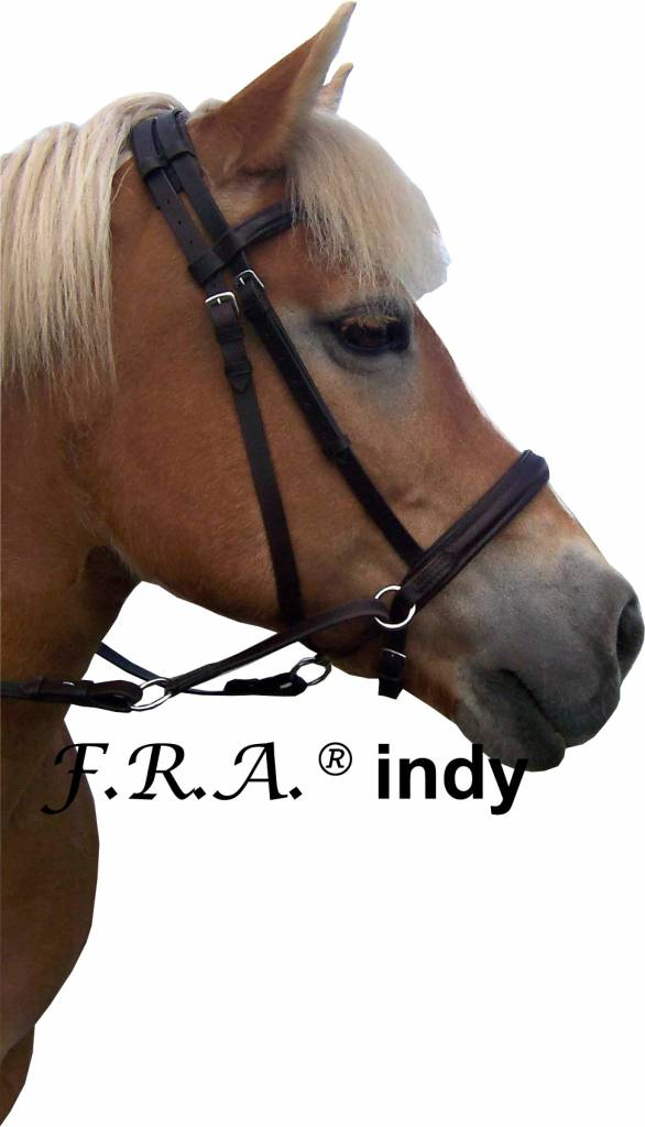 F.R.A. Indy Cross Under Bitless Bridle
