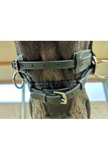 WH Scawbrig Star Bitless Bridle
