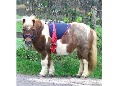 Pony Shop