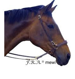 F.R.A. Cross Under Mewi Pony