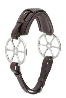 Pin-wheel Hackamore