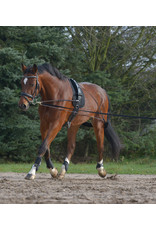 WH Lunging system (Pessoa Style) Pony