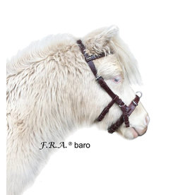 F.R.A. Kaptoom  Baro Pony