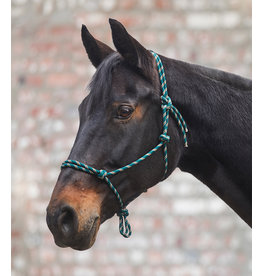 WH Knotted Halter Pony