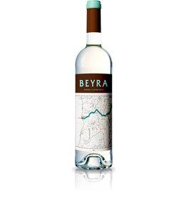 Beyra branco colheita